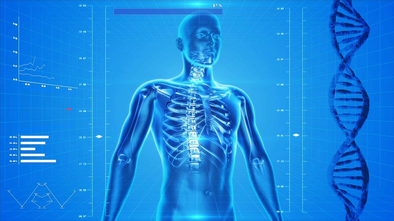 O que é a Medicina Funcional