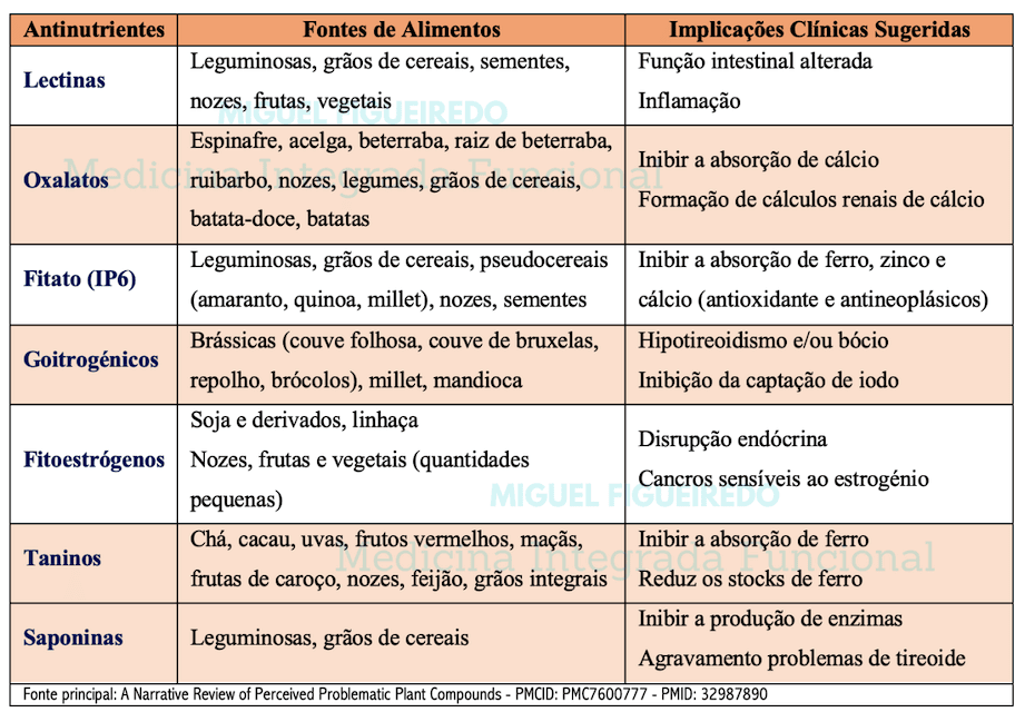 Antinutrientes - Miguel FIgueiredo